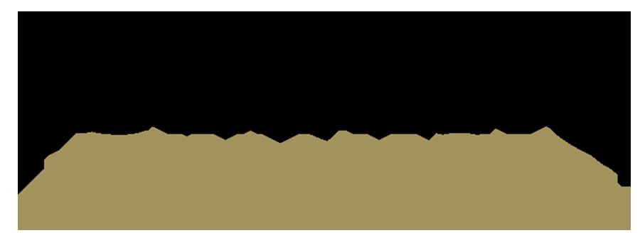 iceberg-finance-logo-dark-retina